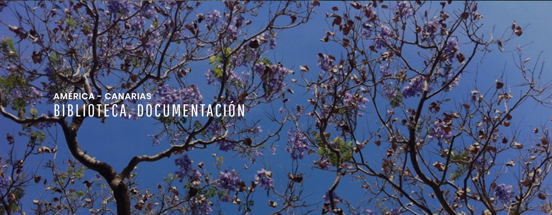 Biblioteca documental de América y Canarias
