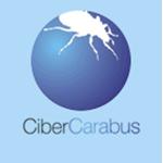 link-cibercarabus
