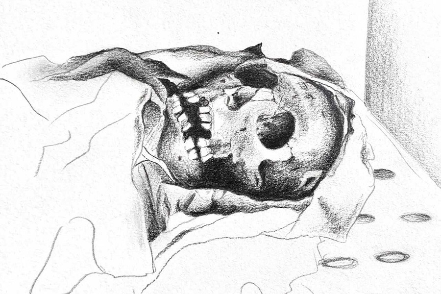 Dibujo momia