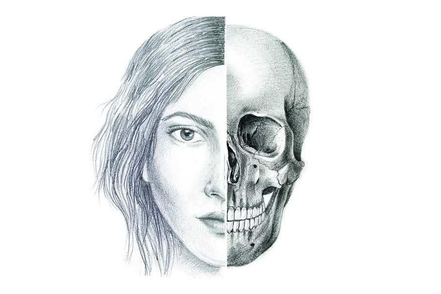 Cara-Cráneo