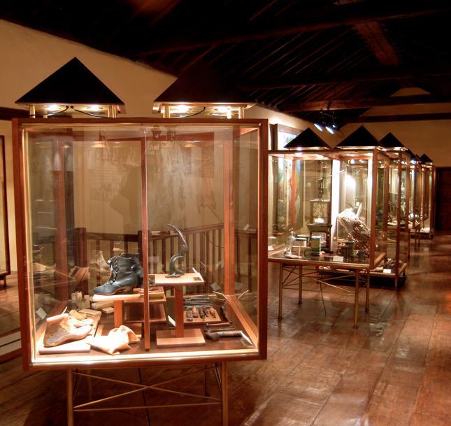 Museos de Tenerife