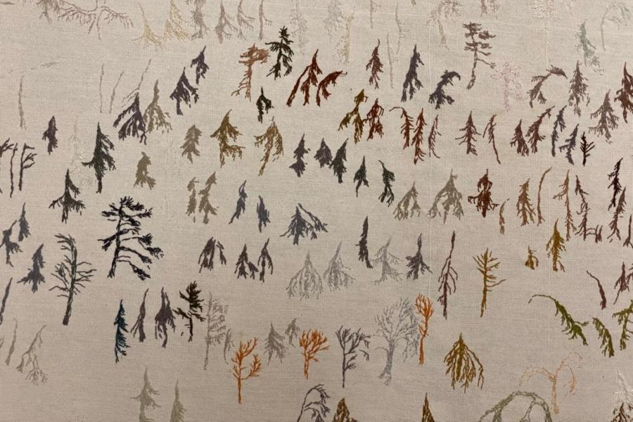obra «En plass i skogen»Obra «Un lugar en el bosque»)