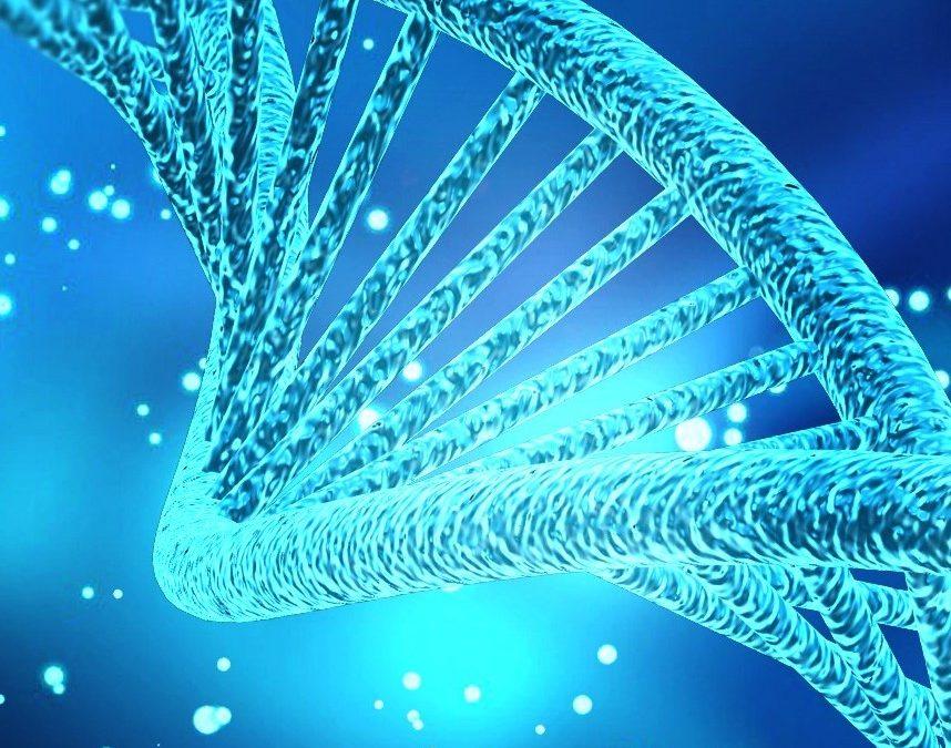 Jornadas ADN