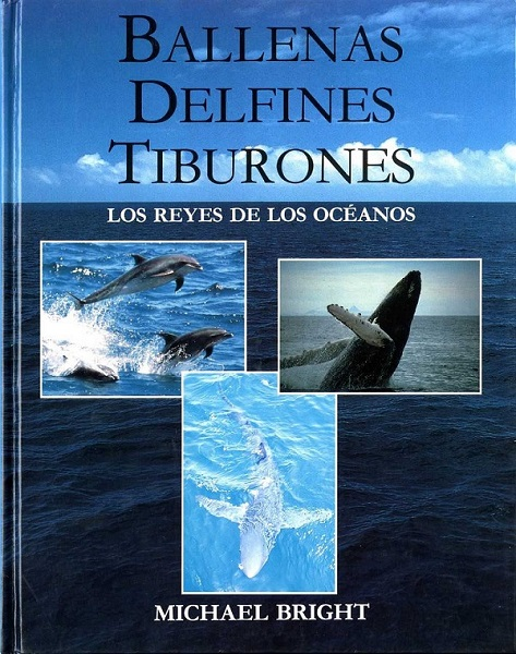 Ballenas. Delfines. Tiburones. Los reyes de los océanos